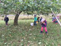08_2016-10-25__0b62d99e___IMG_0683__Copyright_Kindergarten