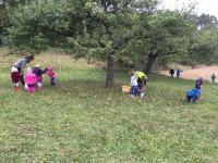 09_2016-10-25__1c1dcdda___IMG_0684__Copyright_Kindergarten
